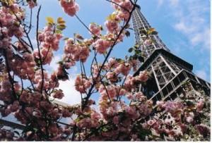 туры в Европу на майские праздники