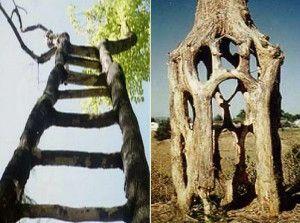 09-drevesnye-skulptury