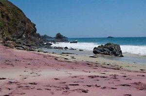 101766875_4171694_plyaj_Pfeiffer_Beach_foto_7