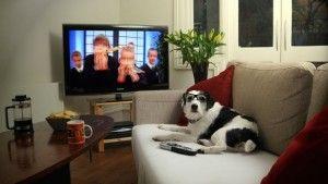 покупка телевизора в сша